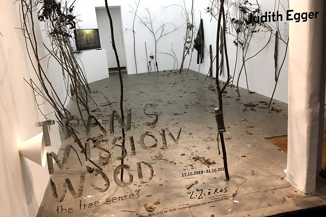 exhibition view, TRANSMISSION WOOD